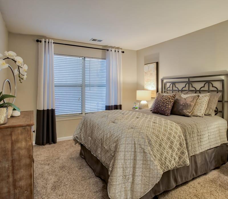 1, 2, & 3 Bedroom Apartments In Midlothian, VA