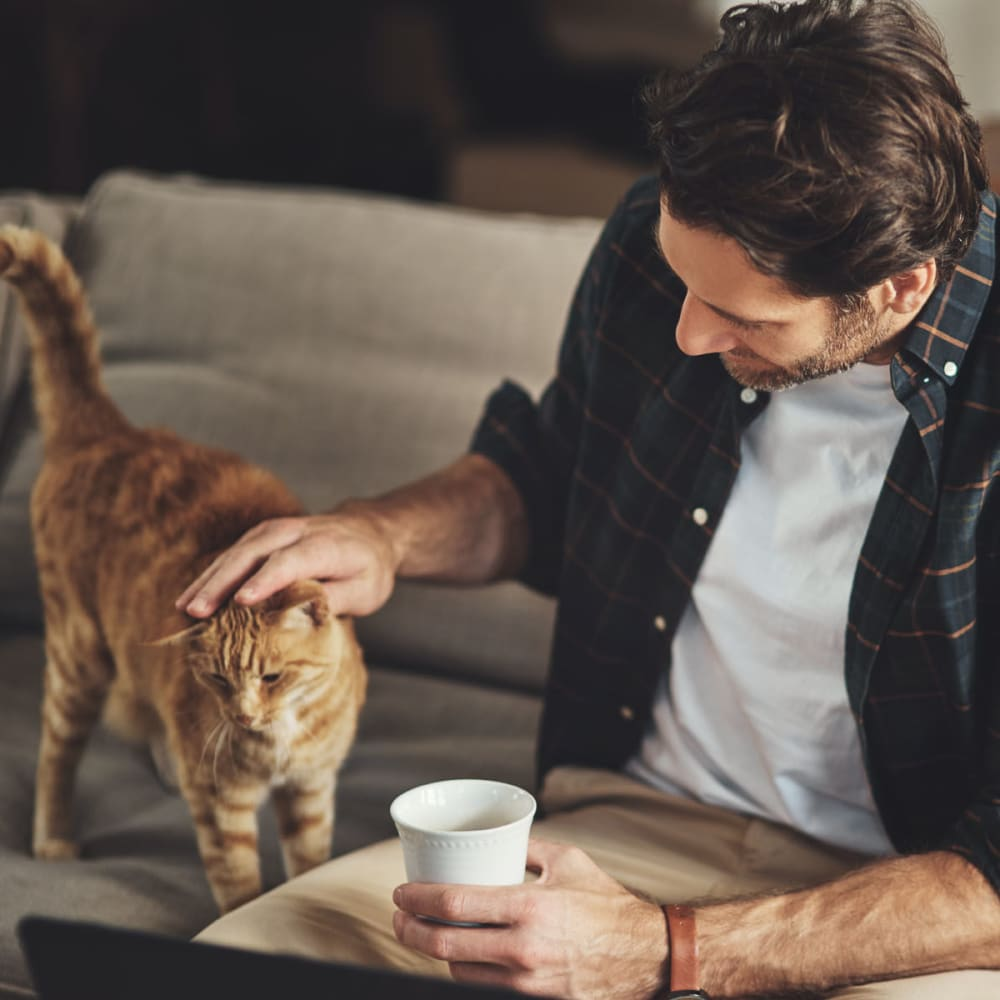 Resident petting his cat while enjoying his morning coffee in their apartment at Oaks Hiawatha Station in Minneapolis, Minnesota