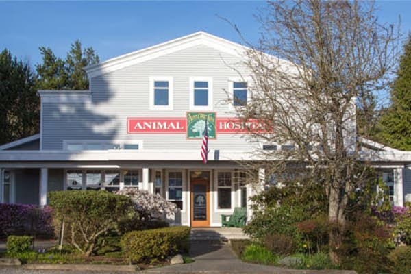 Front of Apple Tree Cove Animal Hospital in Kingston, Washington