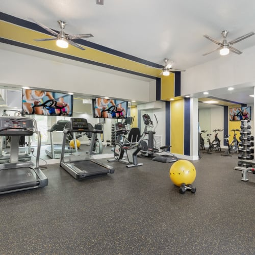 View virtual tour of our fitness center at Beach Walk at Sheridan in Dania Beach, Florida