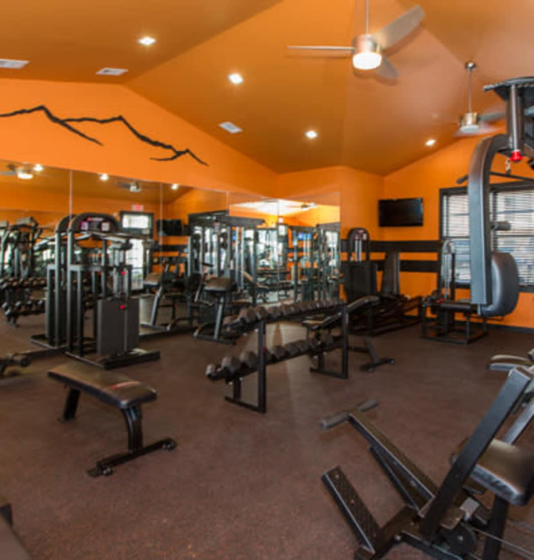 The community amenities here at Peaks at Woodmen Apartments will delight you!