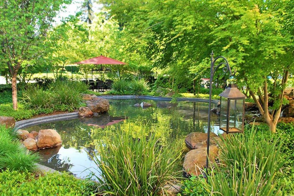 Pond Area at Winding Commons Senior Living in Carmichael, California