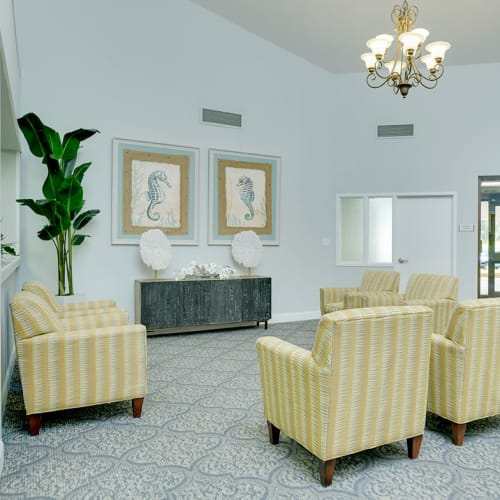 View photos of Grand Villa of Clearwater in Florida