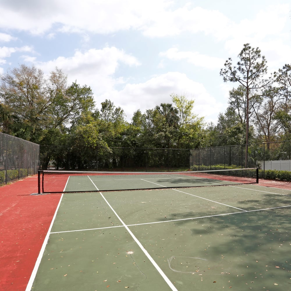A tennis court surrounded by beautiful trees at Southern Cove Apartments in Temple Terrace, Florida