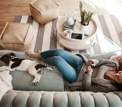 View the pet policy at Element Oakwood in Dayton, Ohio