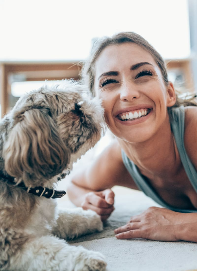 Pet fees at Marquis at the Reserve in Katy, Texas
