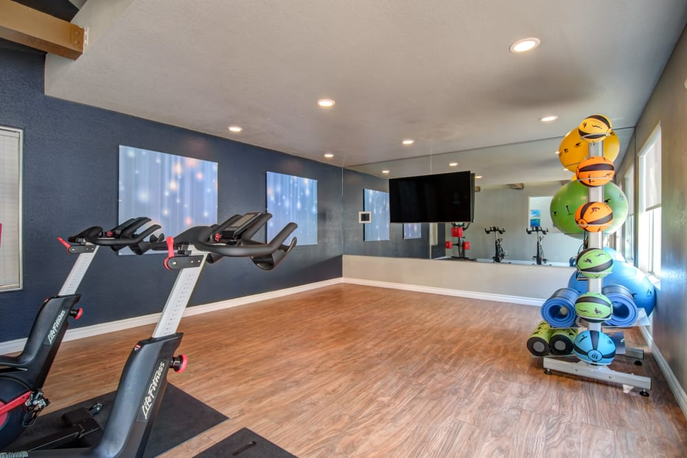 Fitness center with plenty of individual workout stations at Terra Nova Villas in Chula Vista, California