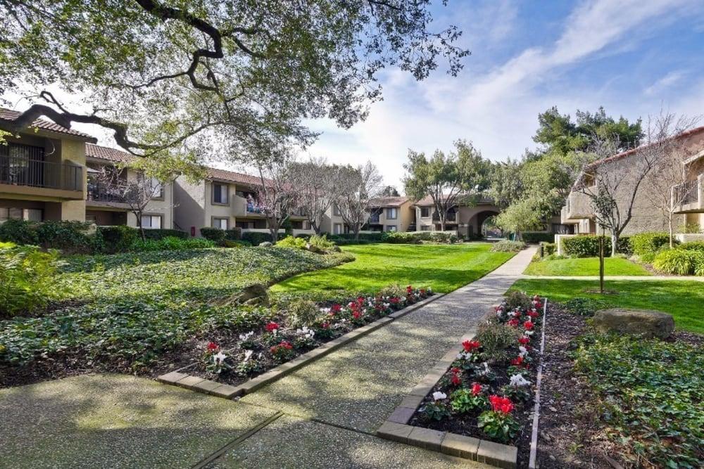Side walk at apartments Terra Willow Glen in San Jose, CA
