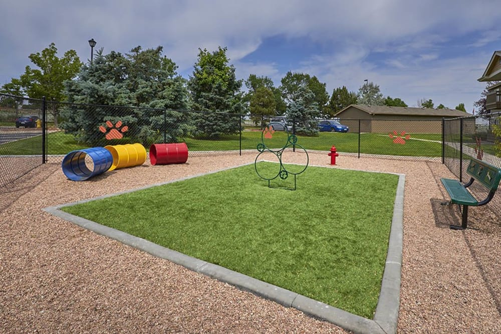 Have fun with your furry friend in the dog park at Crossroads at City Center Apartments in Aurora, Colorado