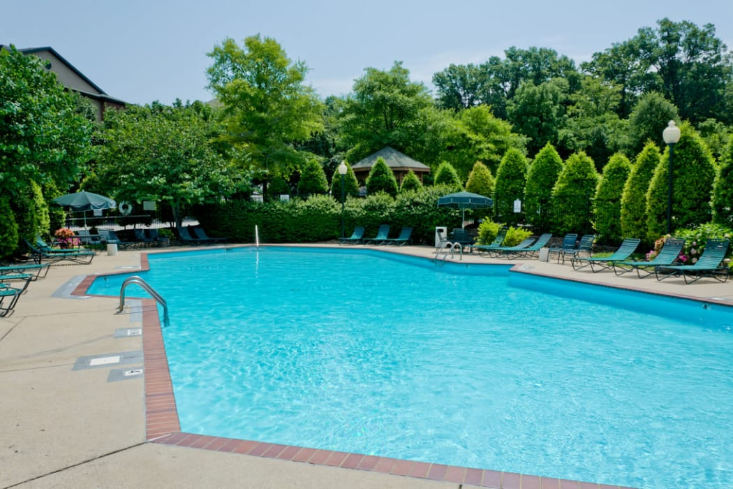 Enjoy a shimmering pool at Pinnacle Heights