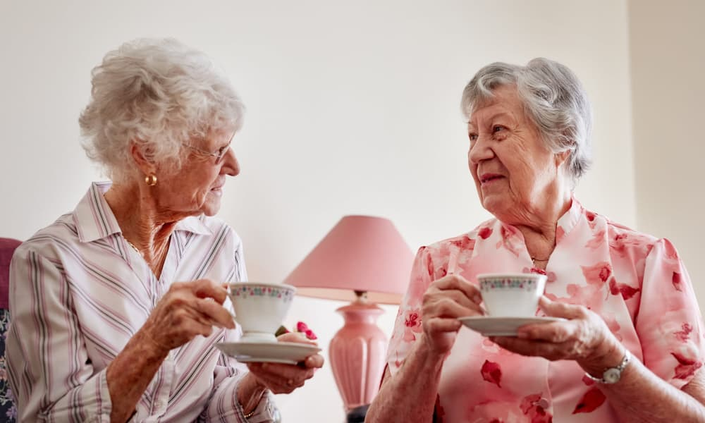 Two residents having a discussion over tea at NorthCliff in Lexington, Tennessee