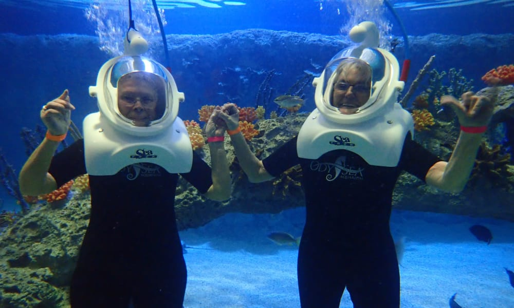 Residents underwater with scuba gear while on an outing from Ashwood Meadows Gracious Retirement Living in Johns Creek, Georgia