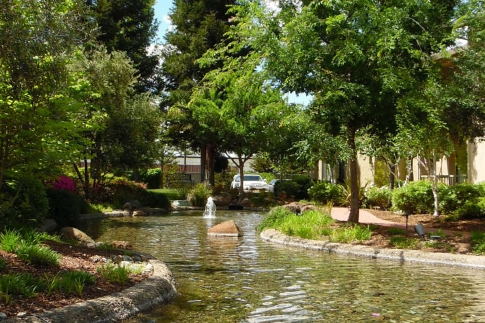 Water feature at Winding Commons Senior Living in Carmichael, California