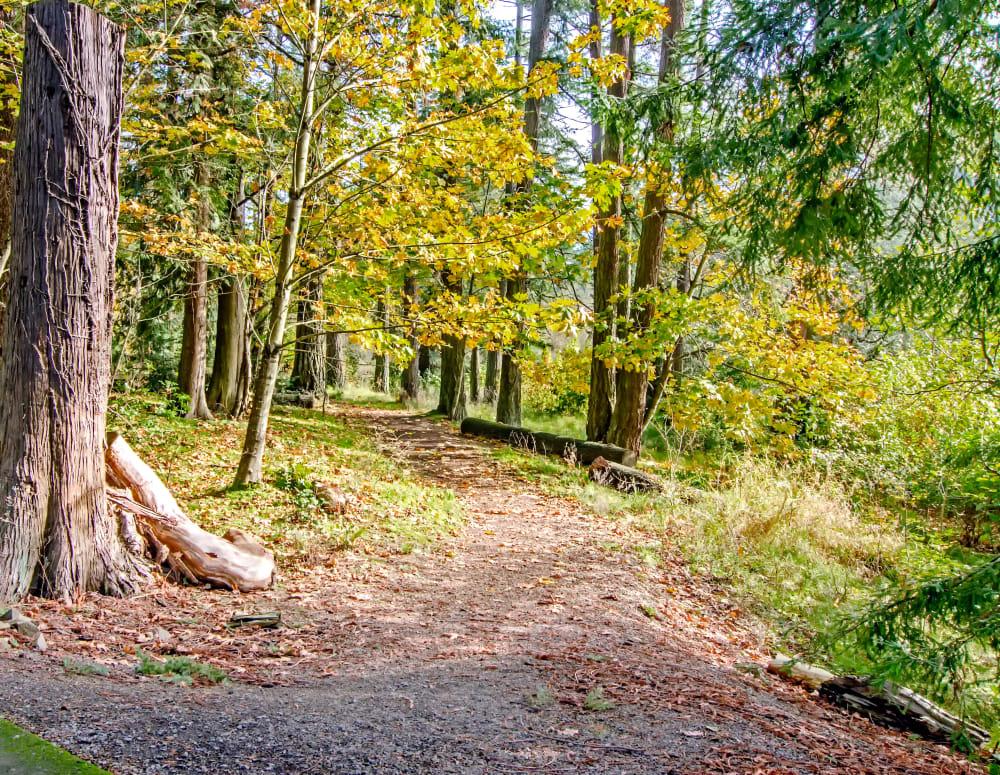 Wooded trail entrance at Sofi at Cedar Mill in Portland, Oregon