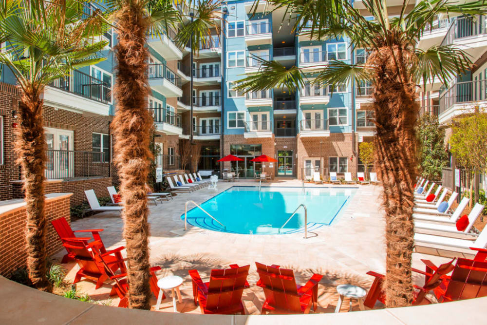 Pool deck with red outdoor chairs and palm trees at Marq Midtown 205 in Charlotte, North Carolina