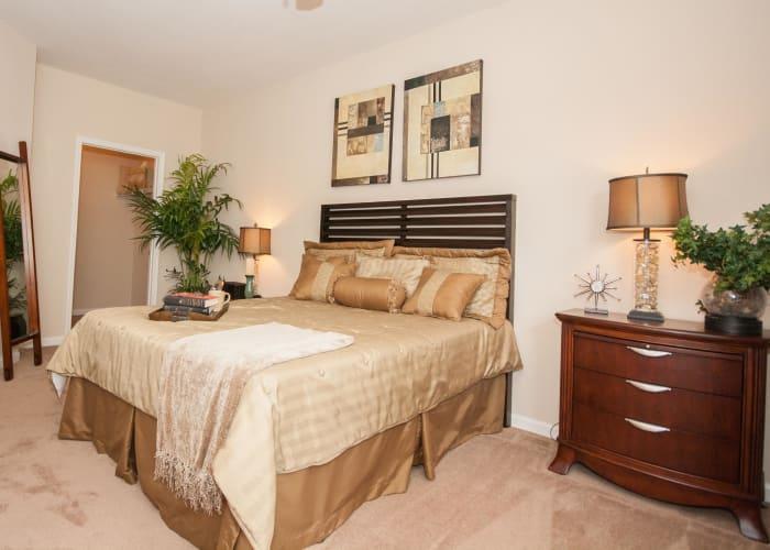 One Rocky Ridge Apartment Homes spacious bedroom in Douglasville, Georgia