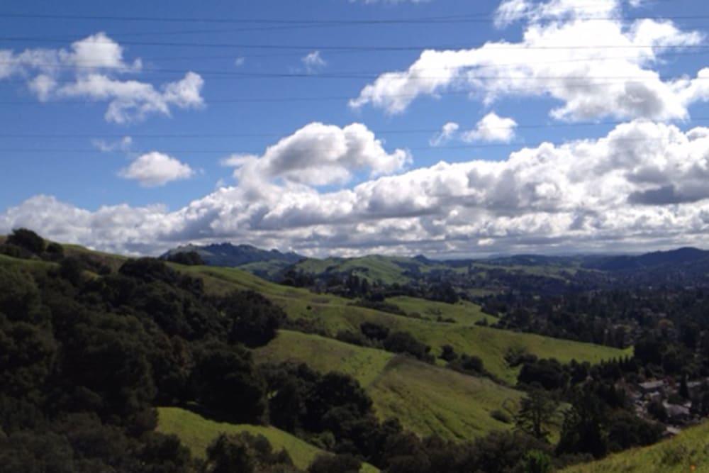A hillside near Merrill Gardens at Brentwood in Brentwood, California