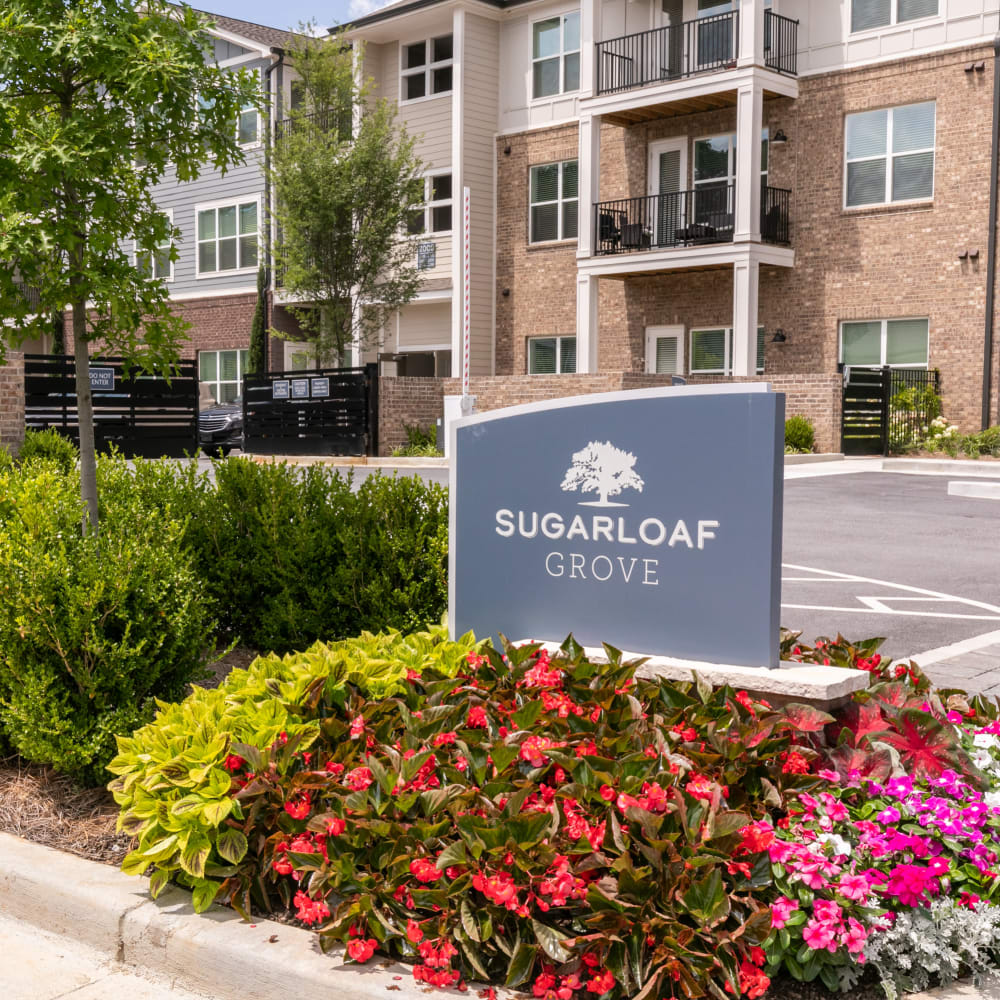 View the site for Sugarloaf Grove apartments in Lawrenanceville, Georgia