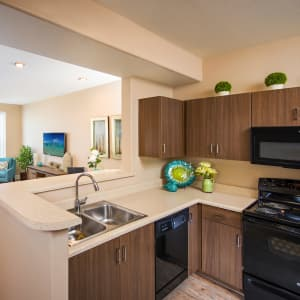 Floor Plans at Southern Avenue Villas in Mesa, Arizona