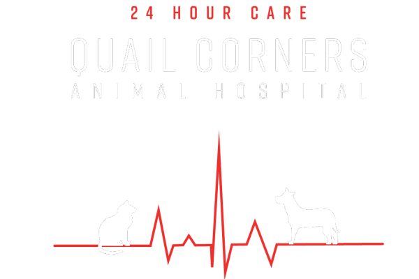 Quail Corners Animal Hospital