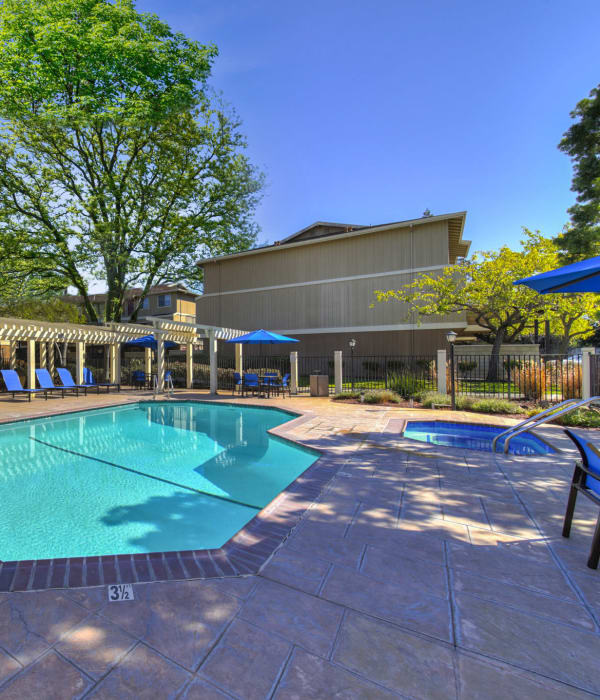 Poolside view with spa and lounges at Parkside Commons Apartments in San Leandro