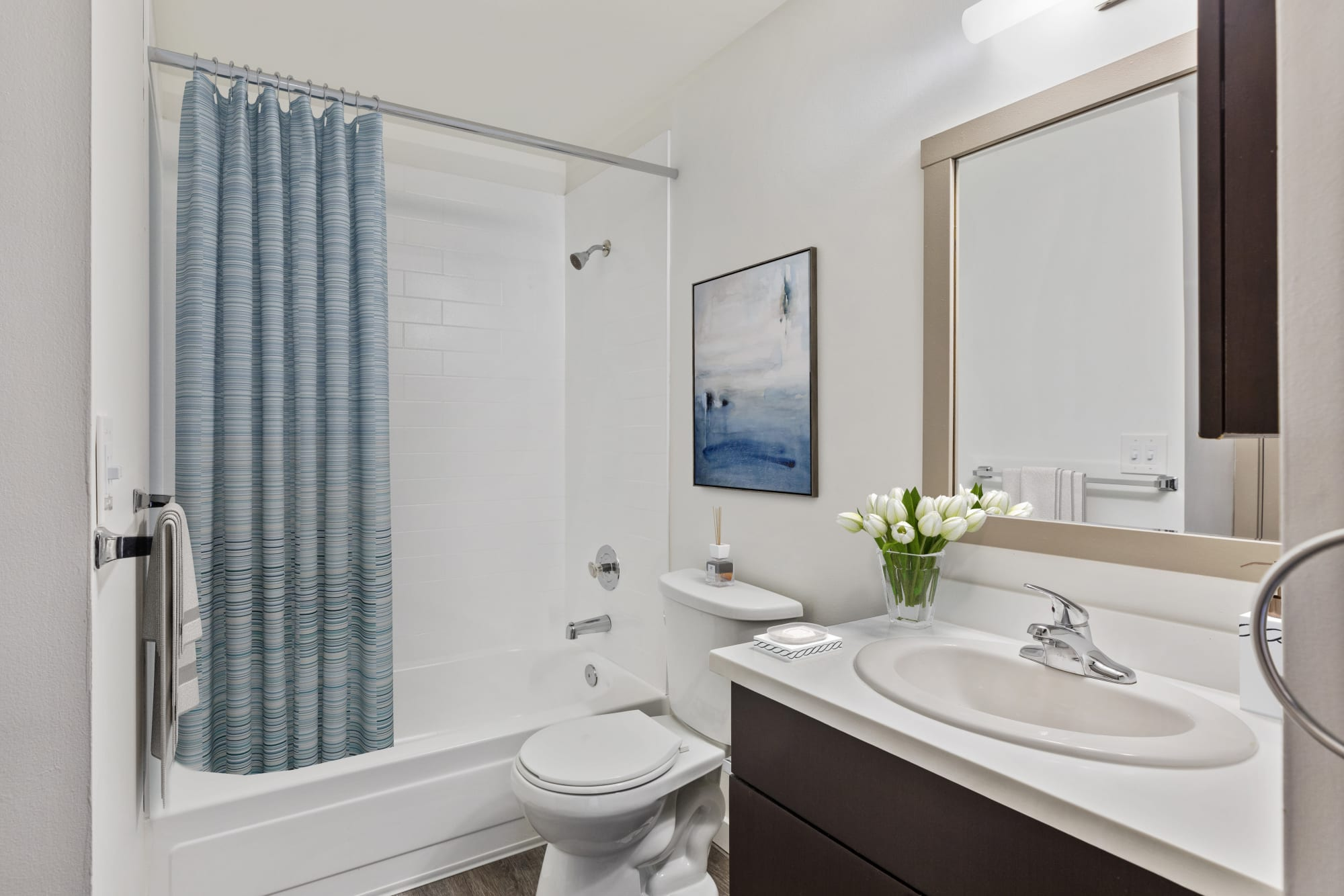 A comfortable restroom in a home at Elan 41 Apartments in Seattle, Washington
