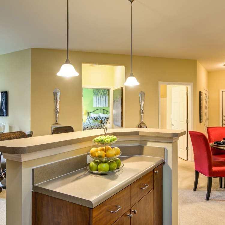 Kitchen with breakfast bar at The Maddox in Duluth, GA