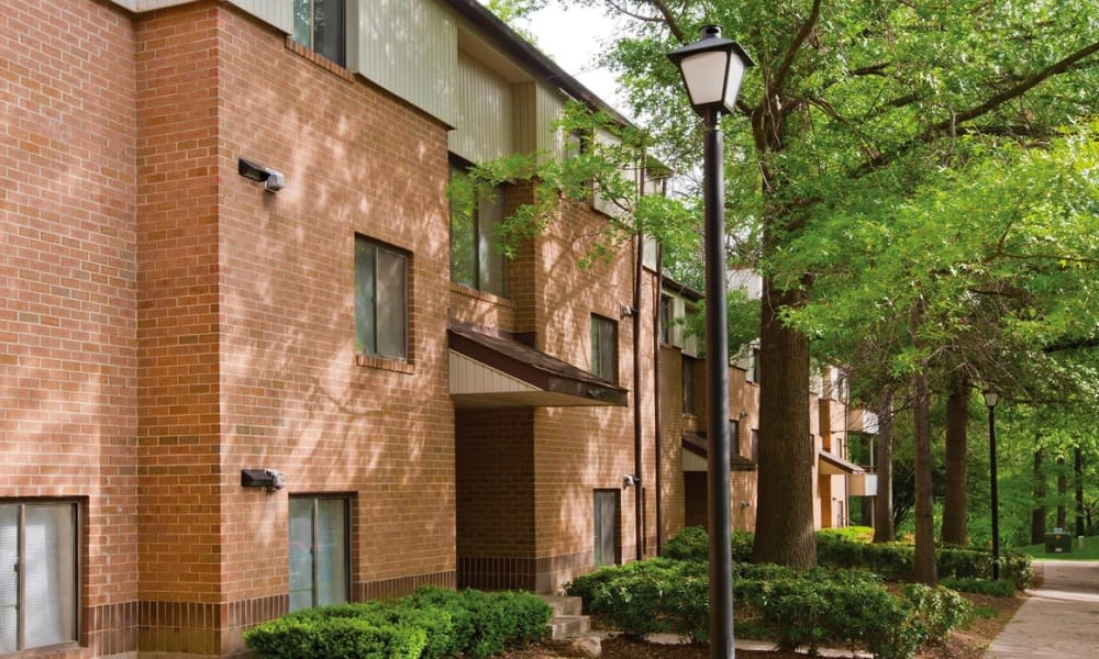 Light post and mature trees outside resident buildings at The Chimneys of Cradlerock Apartments in Columbia, Maryland