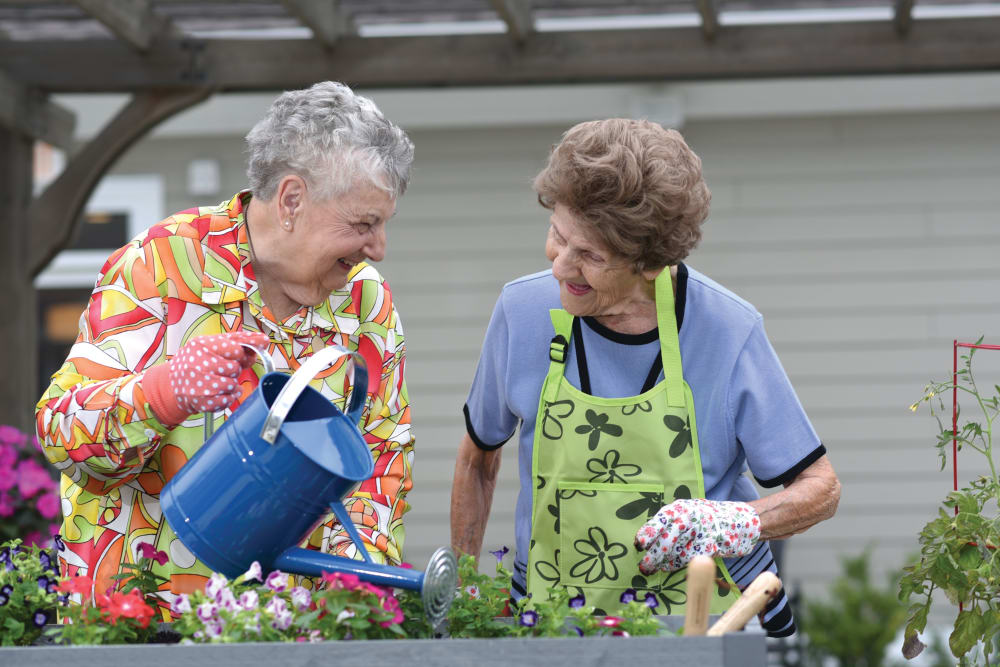 Two senior women gardening