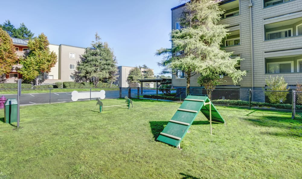Bark Park at Serramonte Ridge Apartment Homes