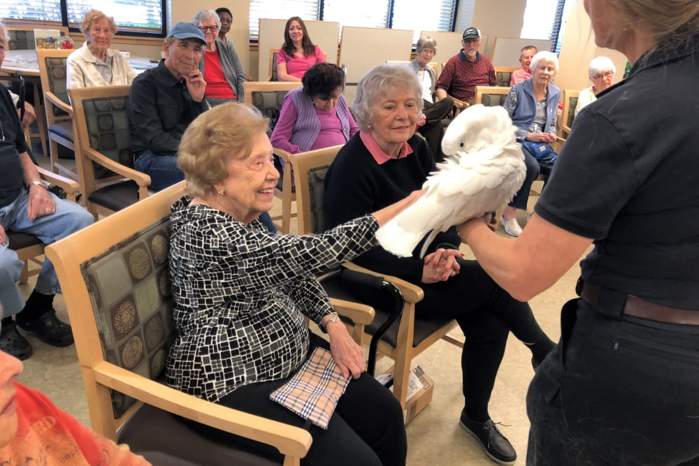 A resident petting a bird at Merrill Gardens at Bankers Hill in San Diego, California.