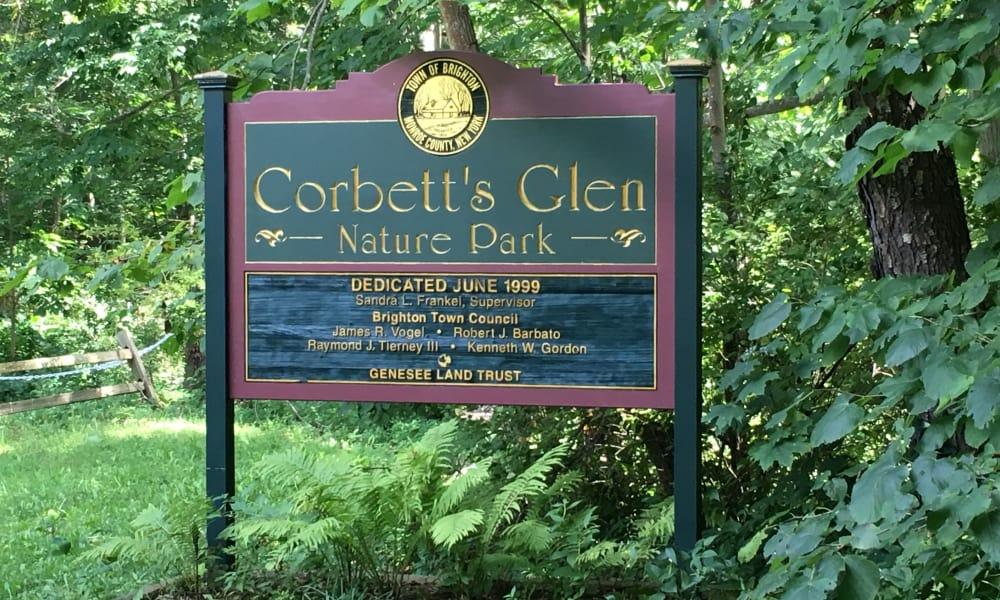 Park near The Venue in Rochester, New York