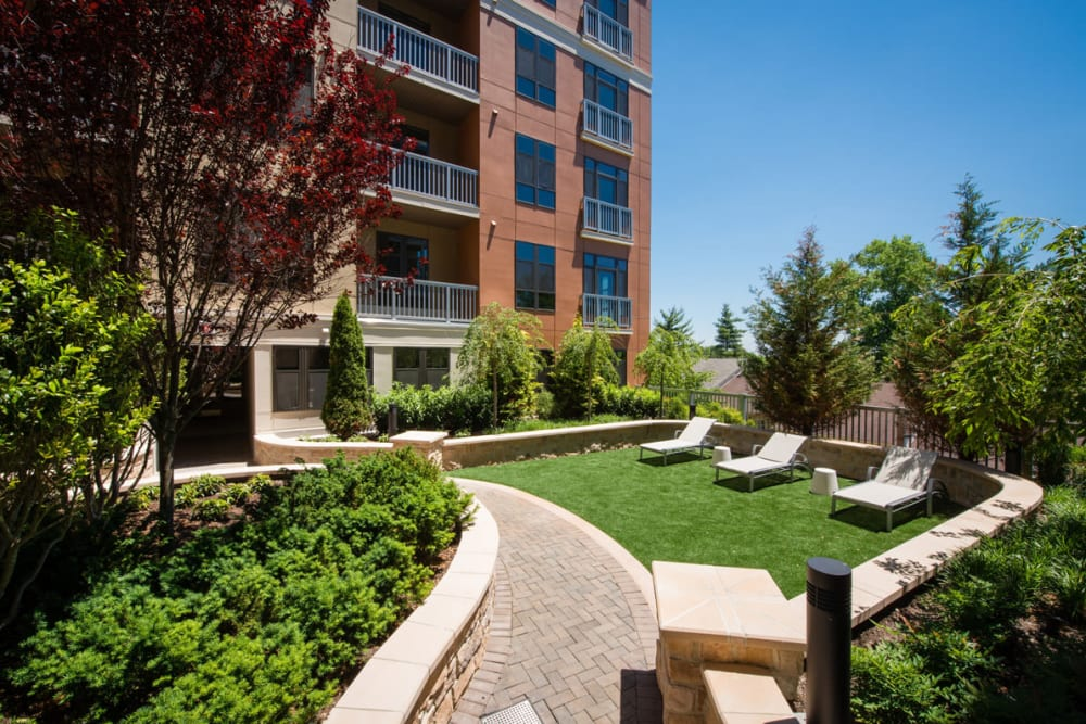 Grassy outdoor courtyard with seating at Solaire 10914 Georgia in Silver Spring, Maryland