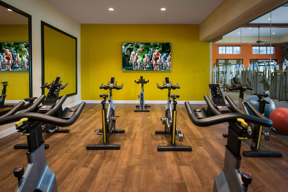 Onsite fitness center at San Valencia in Chandler, Arizona
