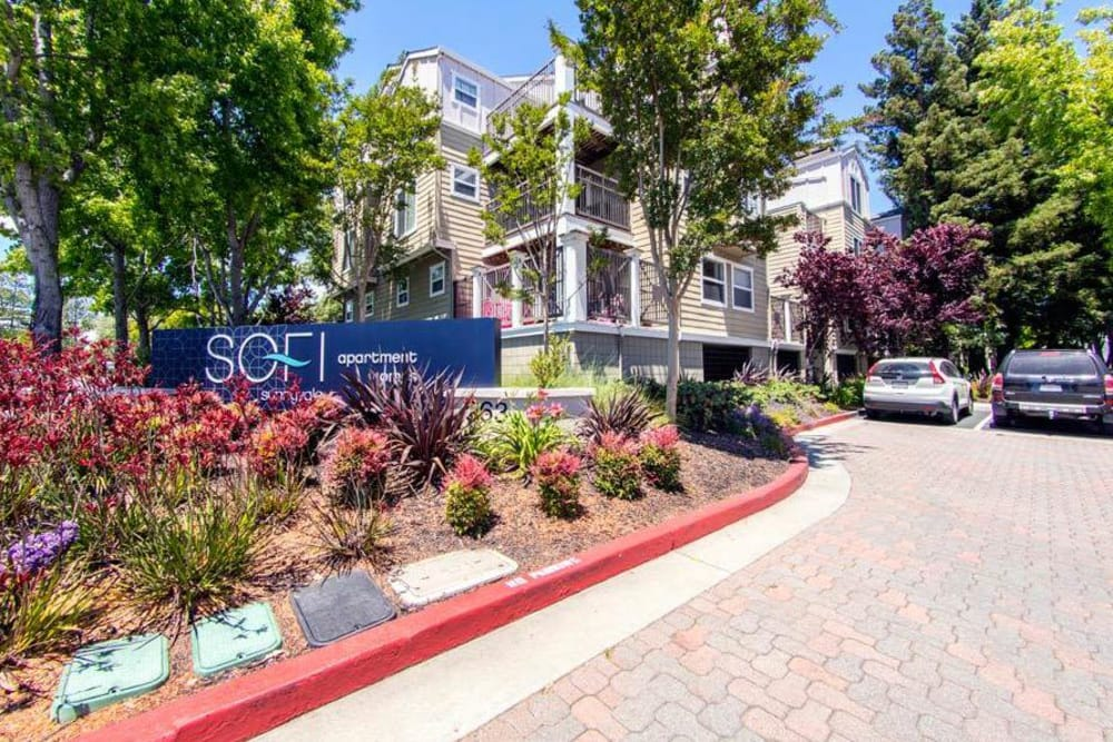Beautiful Sign of Sunnyvale apartments