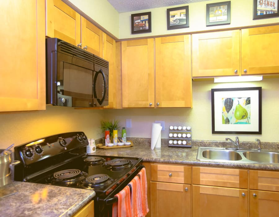 Granite countertops, sleek black appliances, and a dual-basin sink in a model home at Signal Pointe Apartment Homes in Winter Park, Florida