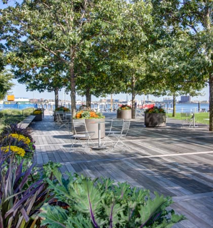 Luxury Apartments for Rent in Seaport Boston | The Benjamin