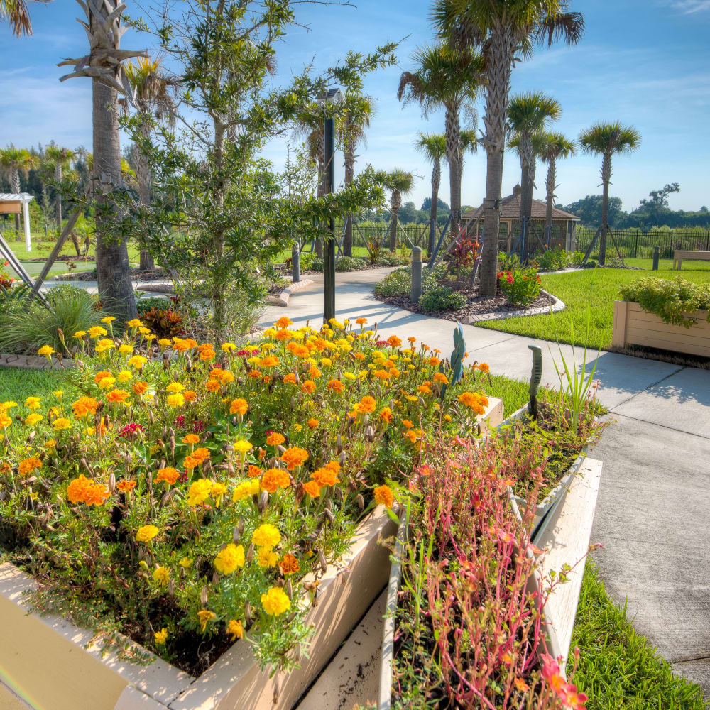 Beautiful landscaping at Inspired Living Bonita Springs in Bonita Springs, Florida