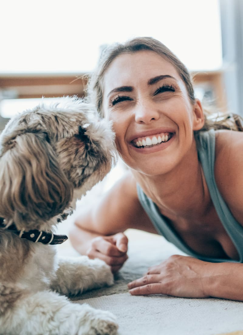 Pet fees at Marquis at Barton Trails in Austin, Texas