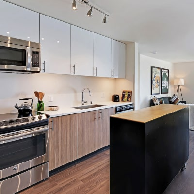 Beautiful well-lit kitchen at Rooster Apartments in Seattle, Washington