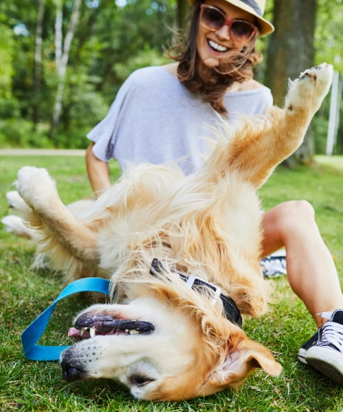 Resident playing with her dog at their favorite local park near Venu at Galleria Condominium Rentals in Roseville, California