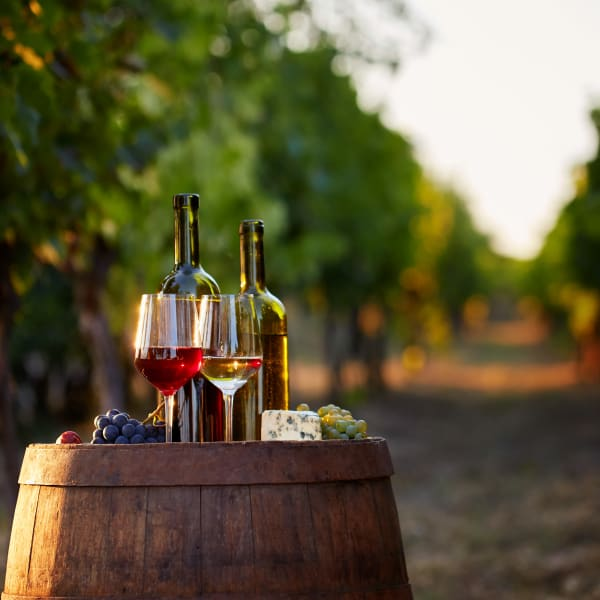 Wine bottles, glasses, cheese, and grapes set on an oak barrel in Redwood City, California