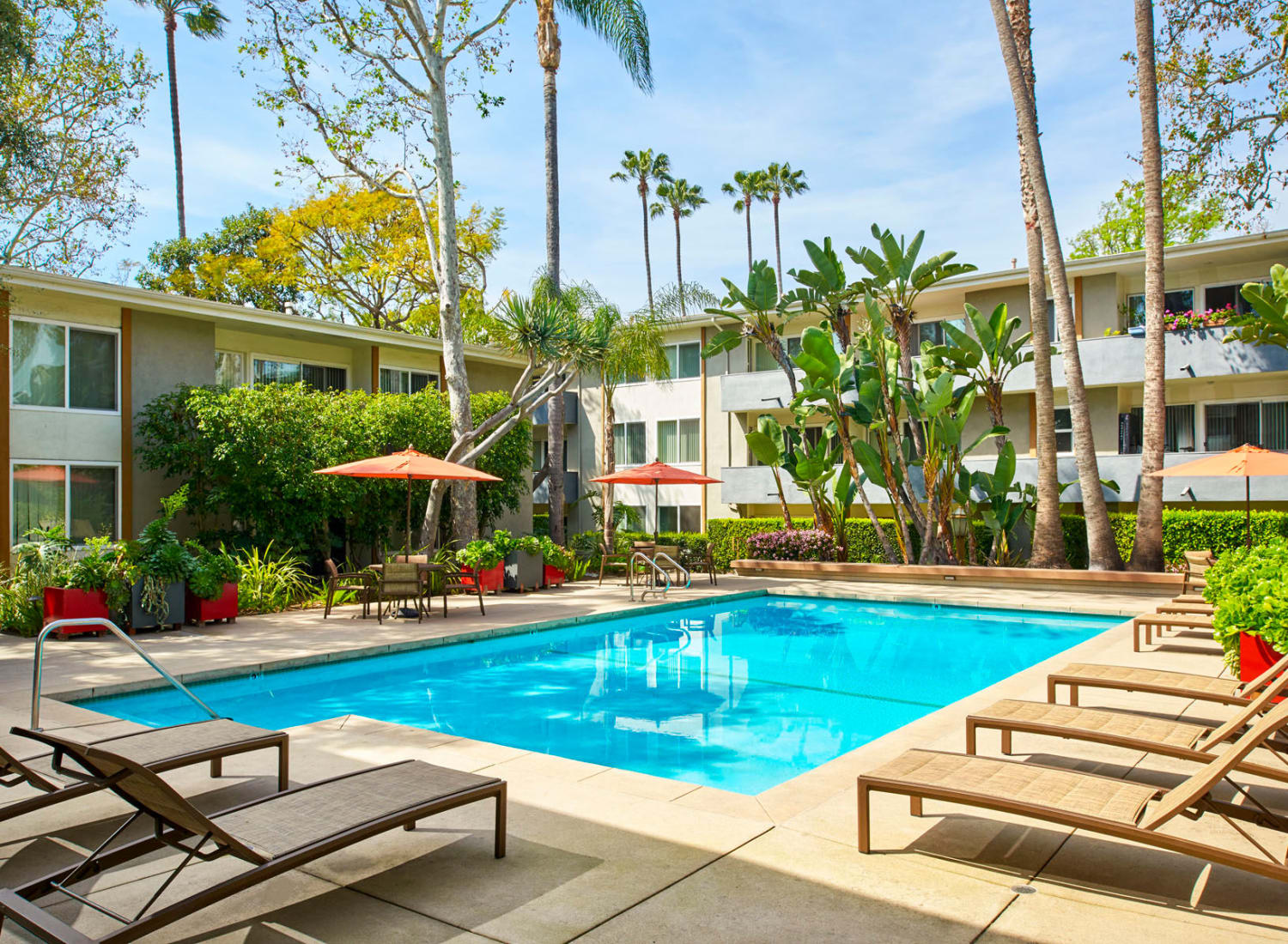 Palm trees and lounge chairs around the resort-style swimming pool at West Park Village in Los Angeles, California
