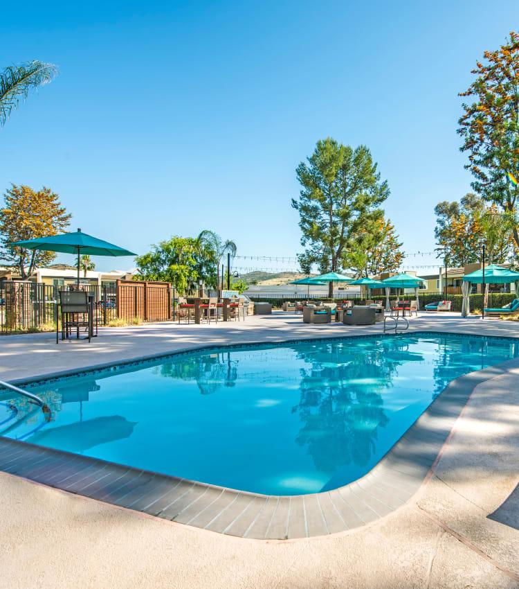 Beautiful resort-style swimming pool at Sofi Poway in Poway, California