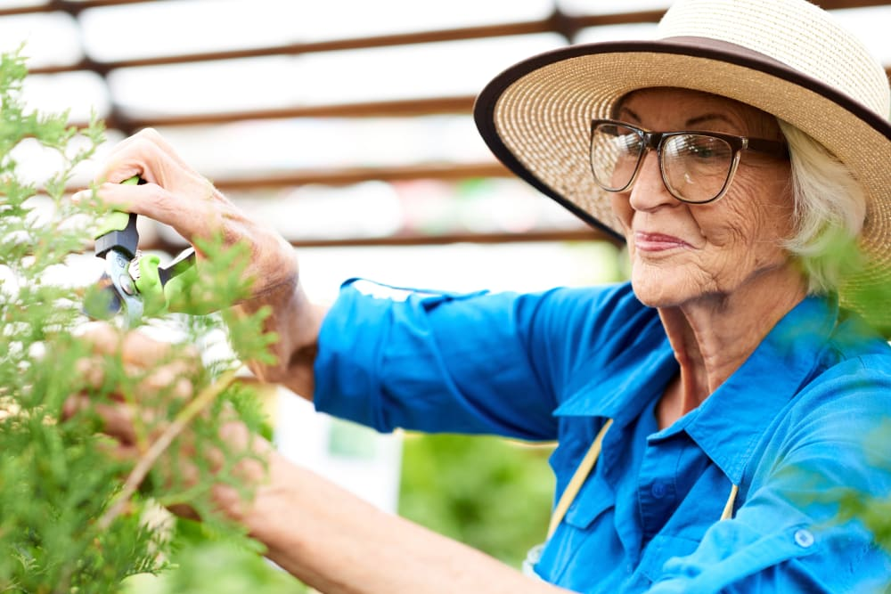 A resident gardening at Inspired Living Delray Beach in Delray Beach, Florida