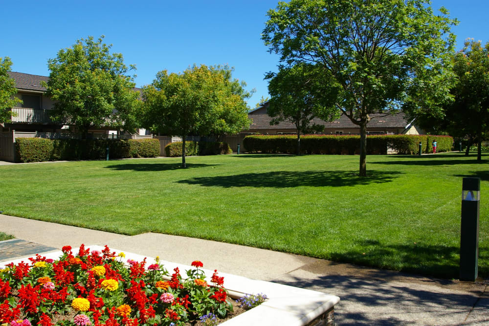 Lush landscaping at Village Green Apartments in Cupertino, California