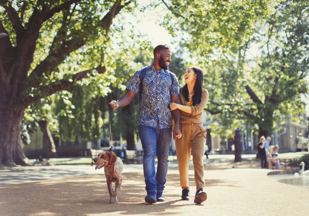 Happy couple walking their dog in a sunny park near South Block Apartments in Salem, Oregon