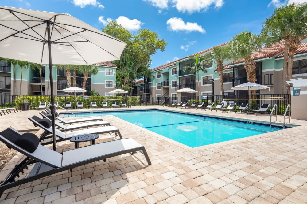 Shaded lounge chairs by the outdoor pool at The EnV in Hollywood, Florida