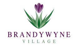 Brandywyne Village