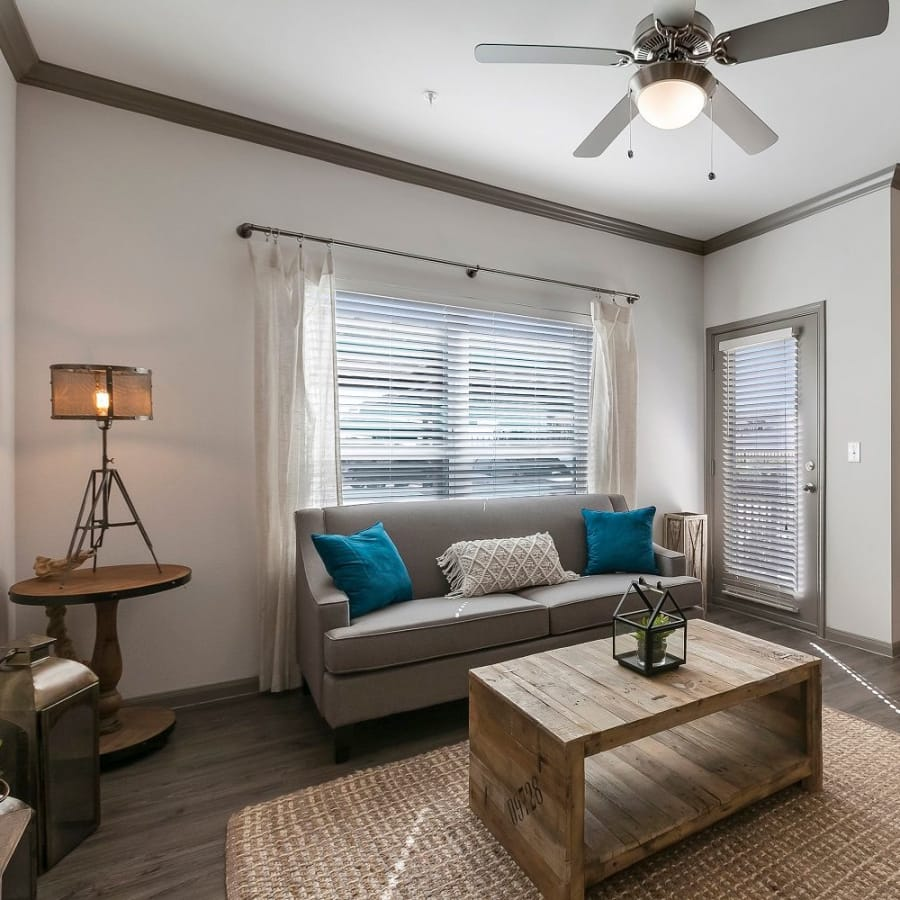 Apartment features at Plum Creek Vue in Kyle, Texas